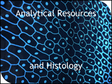 Analytical Resources and Histology